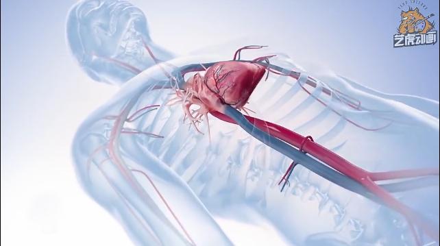医学动画视频模拟